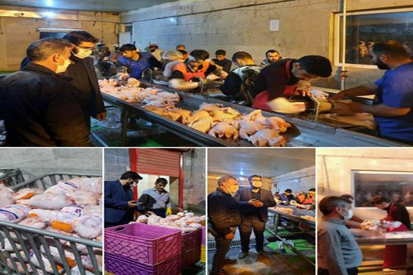 نظارت مستمر شبانه برعملکرد چهار کشتارگاه مرغ و طیور در پاکدشت